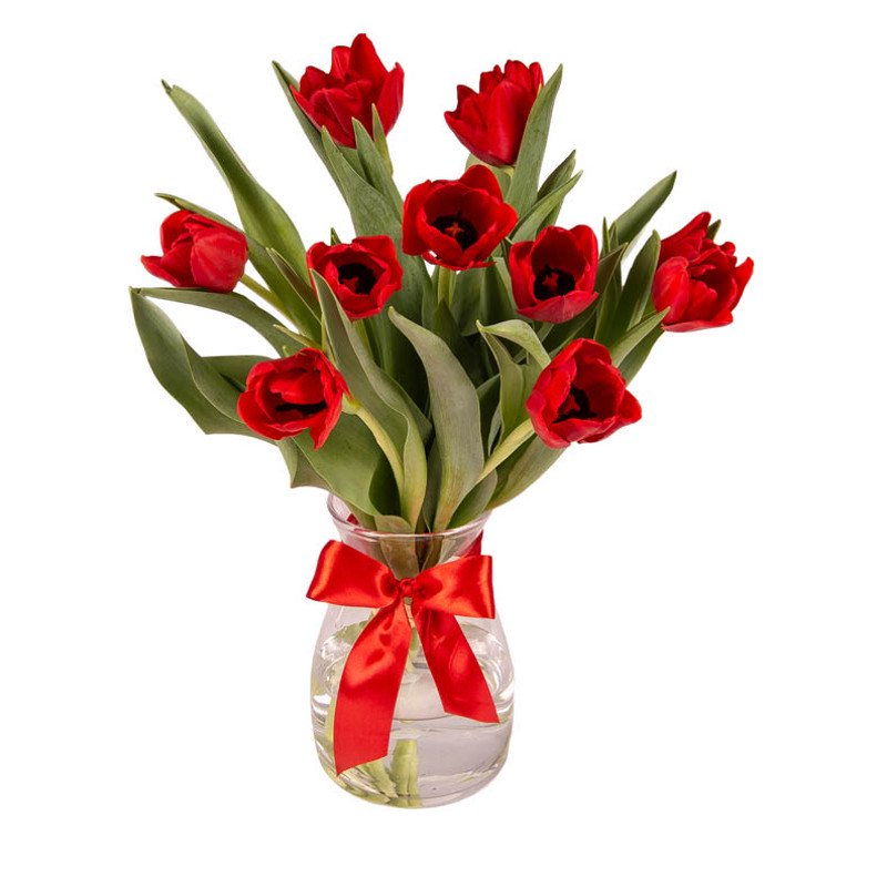 Bouquet of 10 Red Tulips